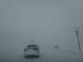 [深川] 猛吹雪