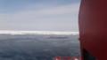 [紋別] 流氷帯へ