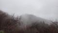 [函館][函館山] ガスに浮かび上がる山頂