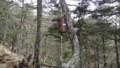 [様似][アポイ岳] クマ除けの鐘