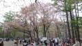 [札幌] 円山公園のようす
