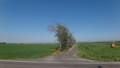 [当別] 地平線いっぱいに続く畑