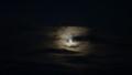 [礼文][8時間コース] スーパームーン前日の月