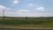 一面の田畑