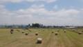 [当別] 牧草ロール収穫中