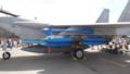 [千歳][千歳基地航空祭2013] F-15爆装
