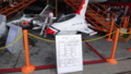 [千歳][千歳基地航空祭2013] F-16?