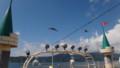 [洞爺湖] 船といっしょに移動するカモメの群れ
