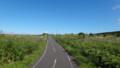 [利尻町] サイクリングロードの風景