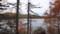 登山道から見る真簾沼