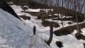 [札幌][藻岩山] 馬の背付近から残雪