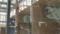 右アメリカワシミミズク、中央エゾフクロウ