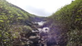 [上富良野][富良野岳][上ホロカメットク山] 上ホロ分岐