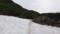 雪渓をトラバース