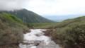 [上富良野][富良野岳][上ホロカメットク山] 上ホロ分岐に近づくと雪渓
