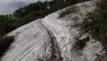 [上川][大雪山] 10分ほどで雪渓があらわれる