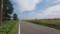 田園地帯をまっすぐ進む道