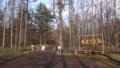 [富良野] 麓郷の森