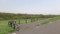 マクンベツ湿原