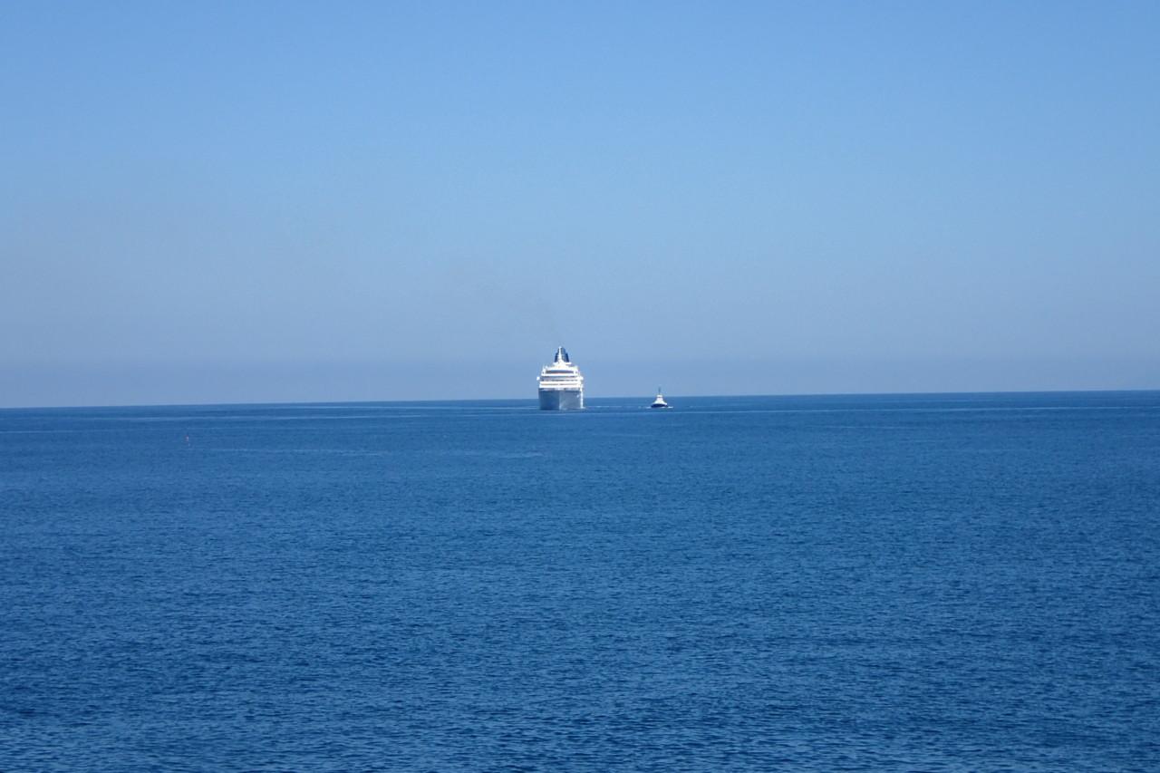 大型客船発見