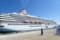 大型客船の正体