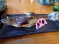 [青森][温泉][宿飯]岩魚塩焼