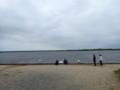 [苫小牧]ウトナイ湖