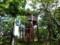 黄金岬展望台