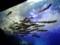 山の水族館 オショロコマ