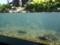 山の水族館 四季の水槽