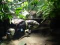 [留辺蘂]山の水族館 オスカー