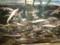 チョウザメの稚魚