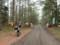 丸山林道入口