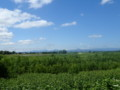 [南幌]支笏湖の山々