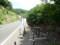 おそらく右が自転車道路