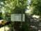 山頂のすぐ裏にある林道