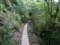 トロッコ道を片道8km