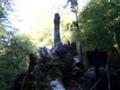 [鹿児島][屋久島][縄文杉]翁杉跡