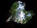[鹿児島][屋久島][縄文杉]ハート型