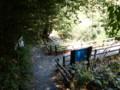 [鹿児島][屋久島][白谷雲水峡]さつき吊橋に合流