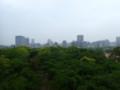 [福岡][福岡城]天守台からの景色