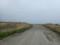 昆布刈石林道に続く旧道