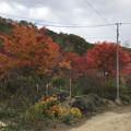 [釧路]舌川原さんちの庭・1