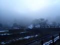 [福井][一乗谷城]霧の一乗谷