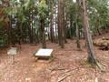 [滋賀][小谷城]御茶屋跡