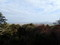天守台からの景色