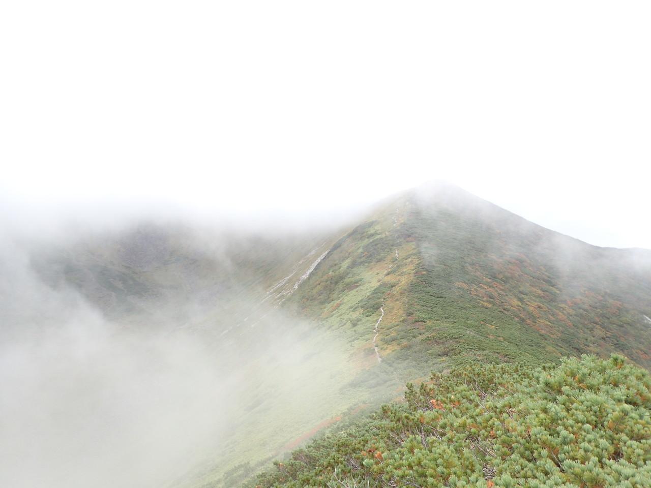 幌尻への稜線