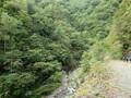 [平取][幌尻岳]林道歩き