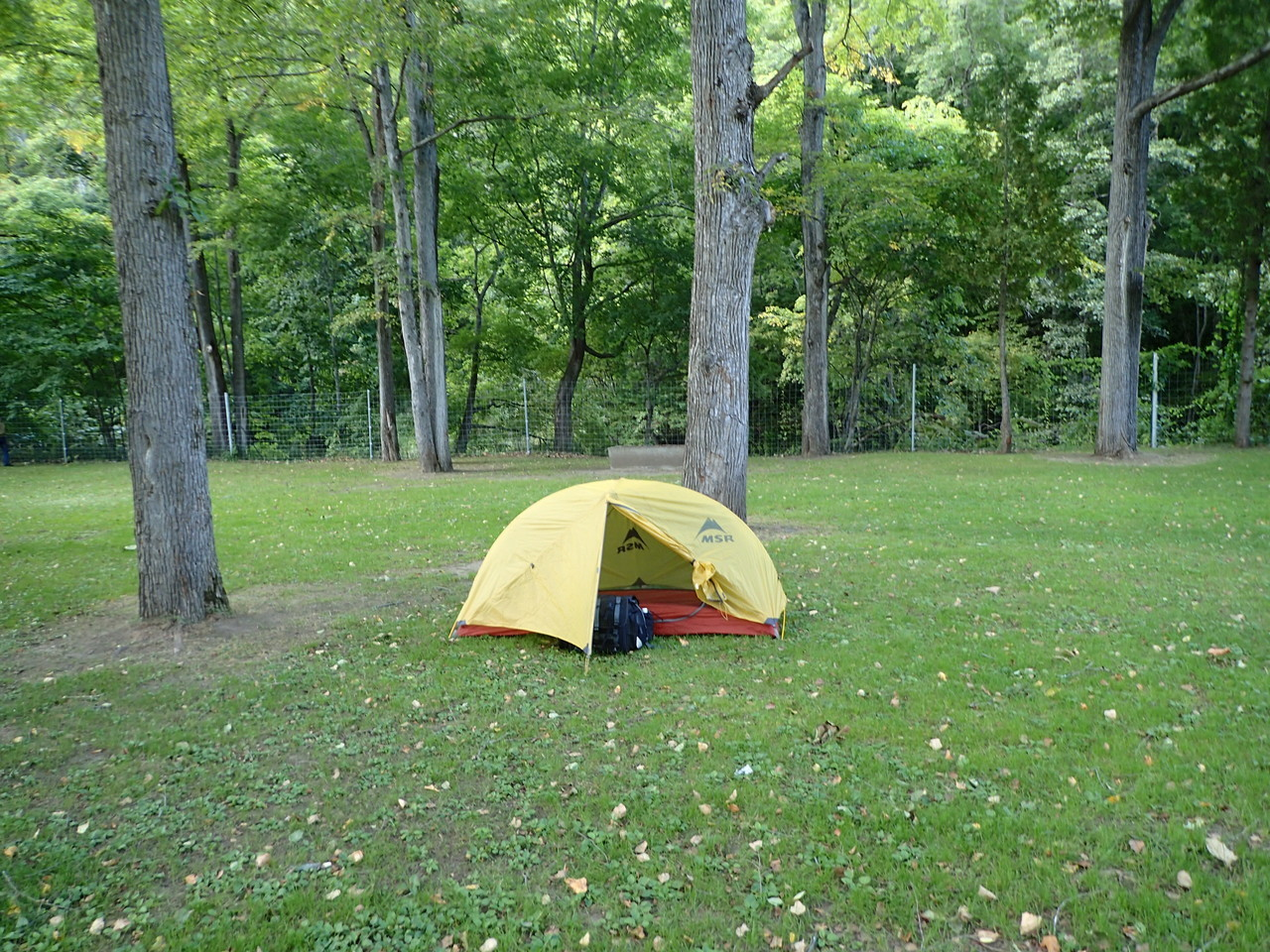 ここをキャンプ地とする