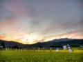 京都新聞写真コンテスト 暮れ行く北嵯峨の稲田